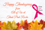 Happy Thanksgiving - Think Pink Rocks